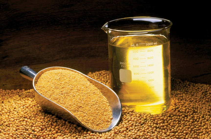 Edible Oil Imports in India