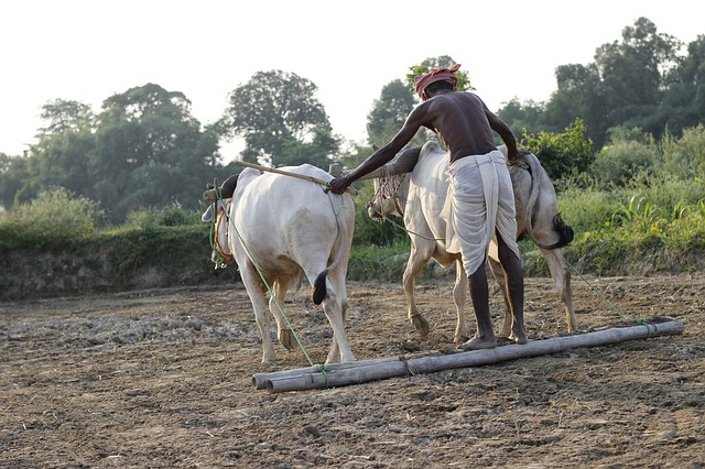Farm Loan Waivers